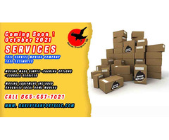 Local Moving Experts It's our domain!